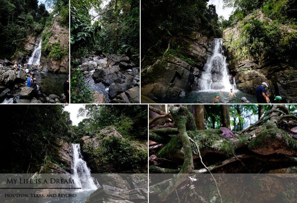La Mina, El Yunque National Forest, Puerto Rico
